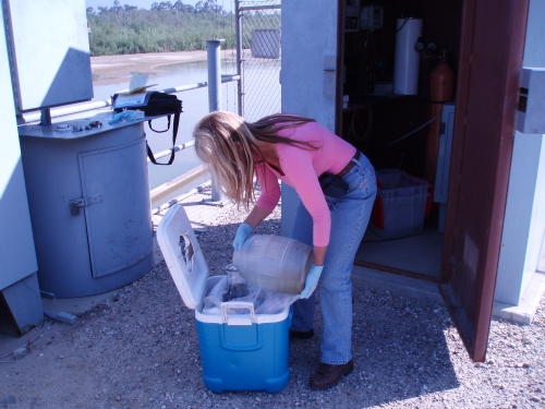 Debi McAlpine compositing aliquots at the Santa Clara River Mass Emission Monitoring Site (May 2005)