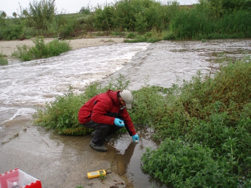 Tommy Liddell taking grab samples at the Calleguas Creek Mass Emission Monitoring Site (Apr. 2007)